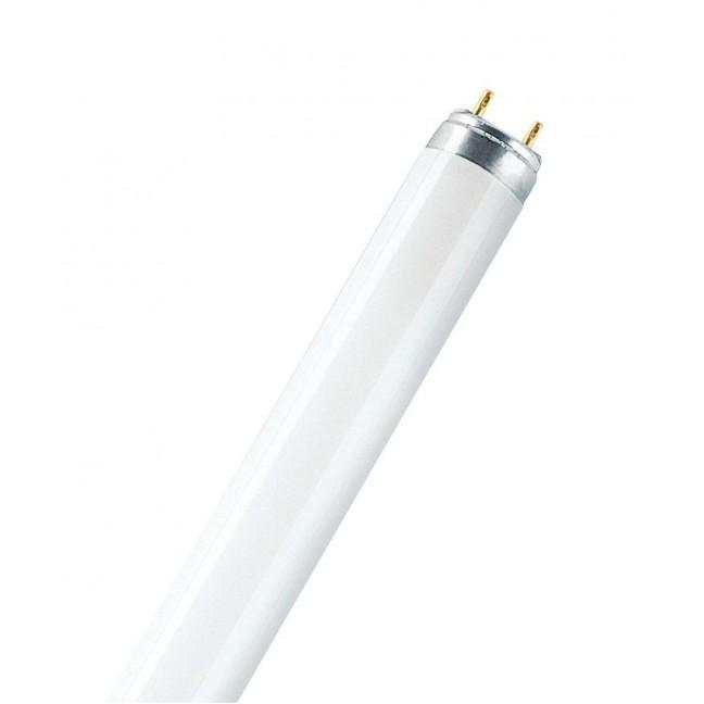 Эл.лампа OSRAM L 18/765-Россия OSRAM G13 (ЛД-18), лампочка