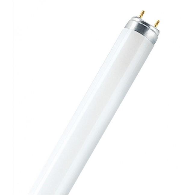 Эл.лампа Osram L 36/965 Biolux de luxe ., лампочка