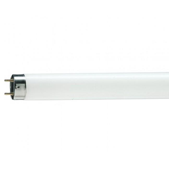 Эл.лампа TL-D 58/33-640 х/бел  Philips ., лампочка