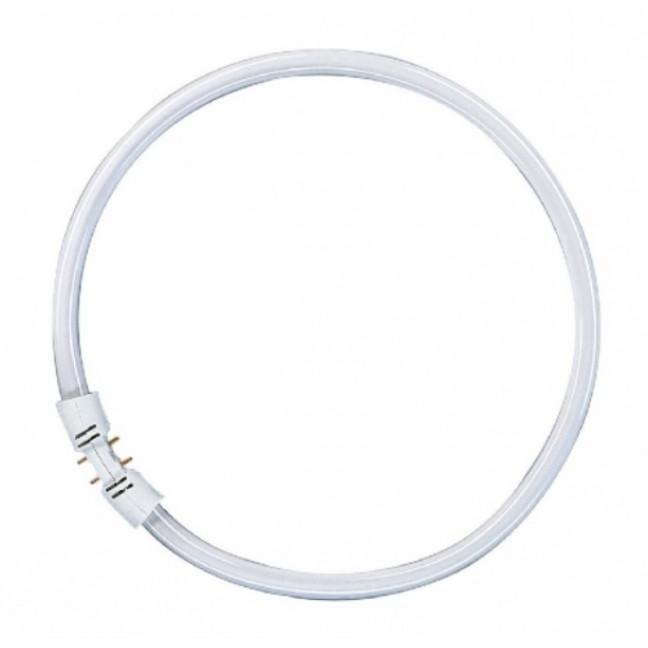 Эл.лампа Osram FC 22/840 х/бел кольц. Т5  2GX13 225 мм 4000К, лампочка