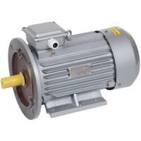 Эл.двигатель АИР100L6 2,2кВт 1000об/мин 2081 380В ИЭК