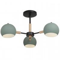 FR5032CL-03B Потолочный светильник