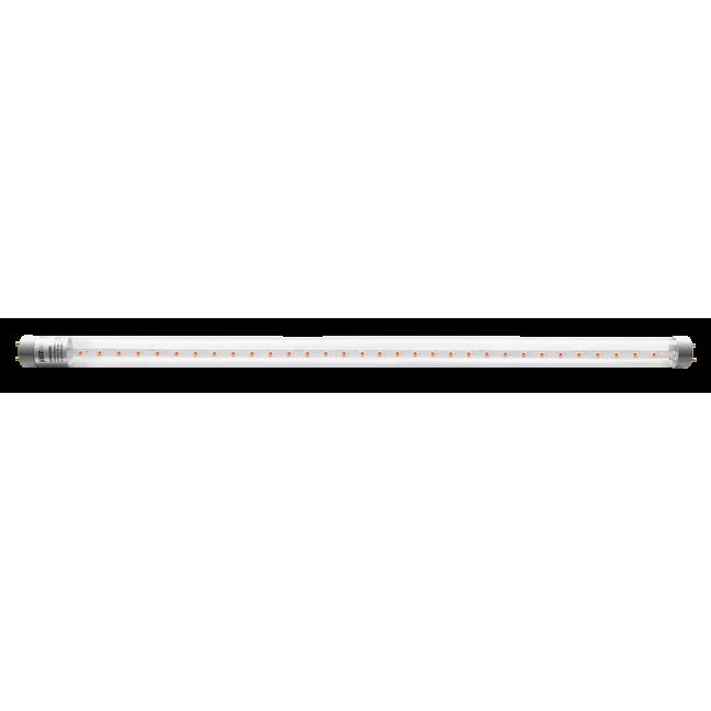 Лампа-Фито LED T8-600 8w G13 для растений 230В Jazzway